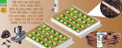 Mô hình tưới nhỏ giọt vườn rau gia đình