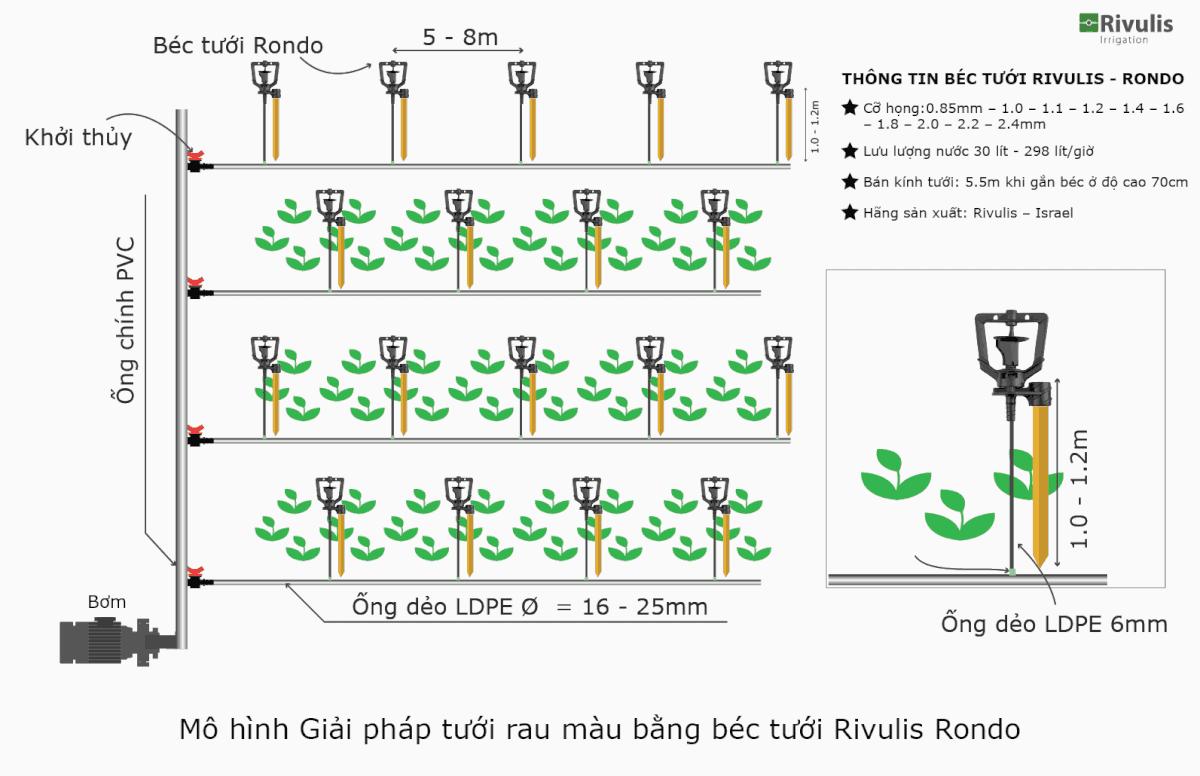 Mô hình Giải pháp tưới rau màu bằng béc tưới Rivulis Rondo.