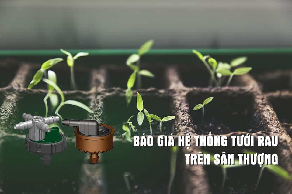 Báo giá hệ thống tưới rau trồng chậu trên sân thượng bằng đầu tưới nhỏ giọt
