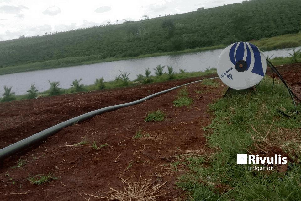 Lắp đặt hệ thống tưới nhỏ giọt rải dọc luống bằng dây tưới Eolos Garden