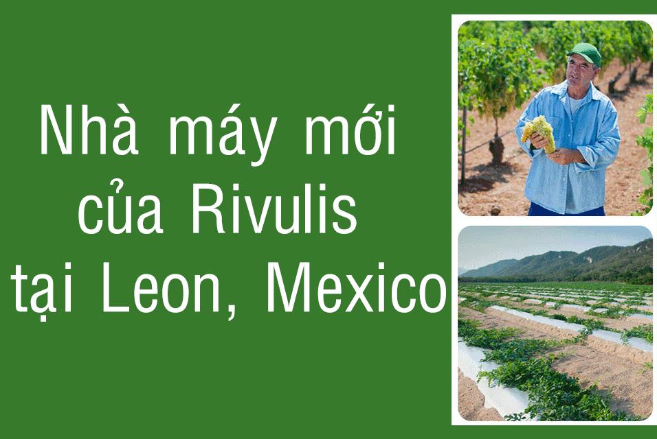 nhà máy rivulis tại leon mexico