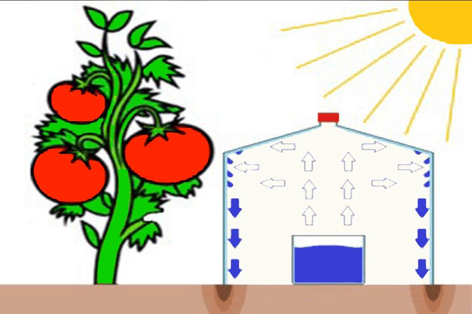 Hệ thống tưới tiêu bằng năng lượng mặt trời