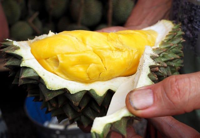 Quả sầu riêng đắt nhất thế giới được bán tại Thái Lan