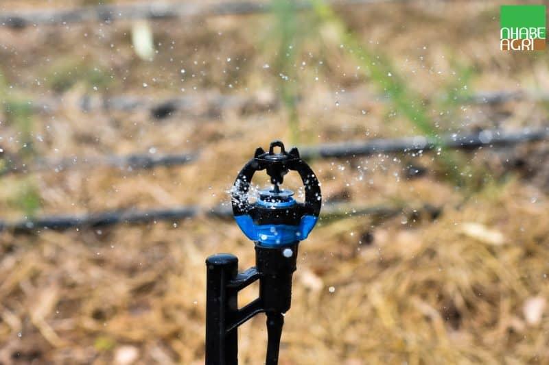 hệ thống tưới tiết kiệm nước với S2000