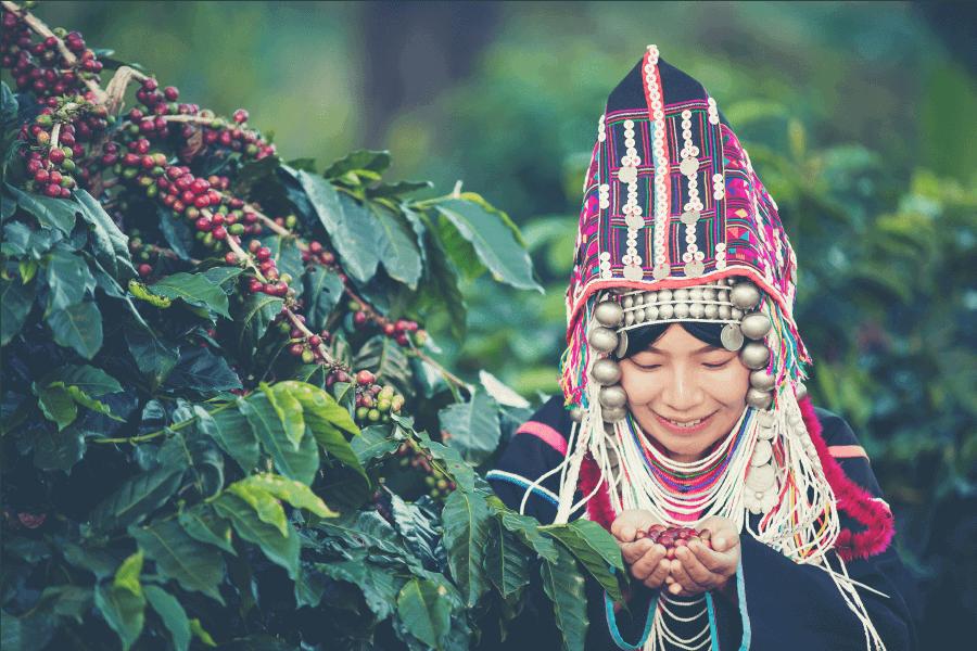 Cây cà phê là mặt hàng nông sản quan trọng của thế giới_2